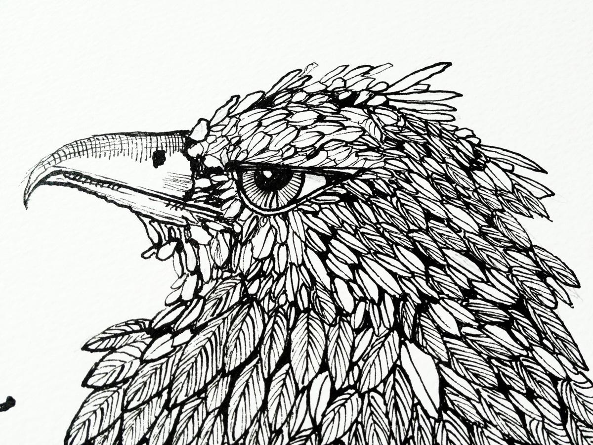 Contemporary Line Drawing Artists : Tegninger dyr botaniske mennesker surrealistiske sorte