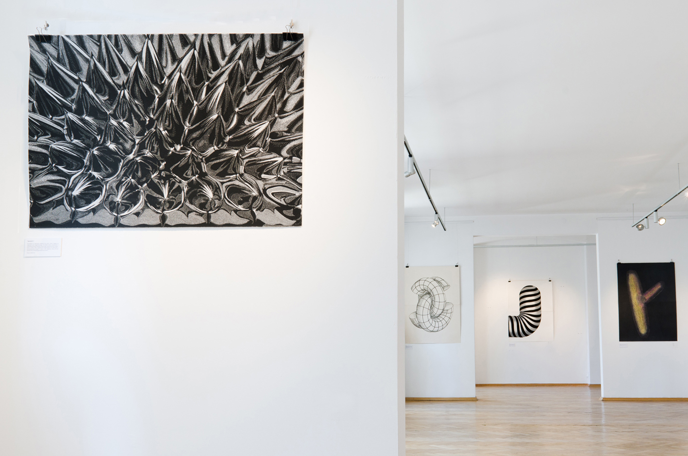 FERROFLUID linocut_Doctorate Degree exhibition