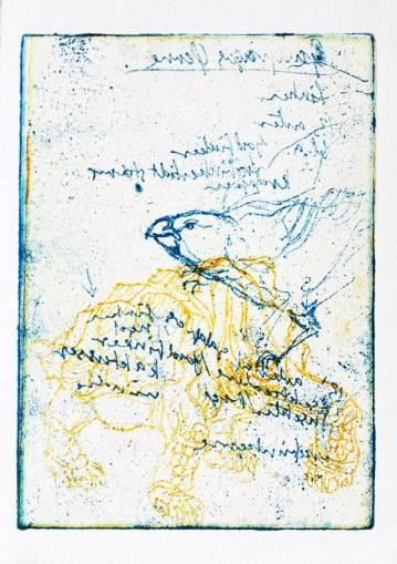 plakater, engraveringer, dyr, kæledyr, blå, hvide, gule, papir, andre-medier, interiør, bolig-indretning, moderne, moderne-kunst, Køb original kunst og kunstplakater. Malerier, tegninger, limited edition kunsttryk & plakater af dygtige kunstnere.