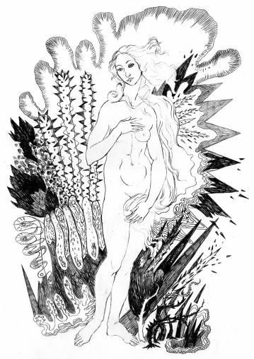 kunsttryk, gliceé, æstetiske, figurative, monokrome, portræt, kroppe, botanik, seksualitet, sorte, hvide, blæk, papir, sort-hvide, erotiske, blomster, nøgenhed, seksuel, Køb original kunst af den højeste kvalitet. Malerier, tegninger, limited edition kunsttryk & plakater af dygtige kunstnere.