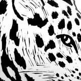 kunsttryk, linoleumstryk, dyr, figurative, grafiske, monokrome, pop, portræt, kroppe, tegneserier, vilde-dyr, sorte, hvide, akryl, sort-hvide, samtidskunst, dansk, dekorative, design, interiør, bolig-indretning, moderne, moderne-kunst, nordisk, plakater, skandinavisk, vilde-dyr, Køb original kunst og kunstplakater. Malerier, tegninger, limited edition kunsttryk & plakater af dygtige kunstnere.