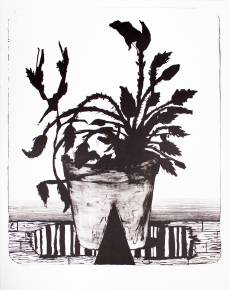 kunsttryk, litografier, æstetiske, børnevenlige, figurative, illustrative, landskab, botanik, tegneserier, sorte, grå, hvide, blæk, papir, blomster, planter, Køb original kunst af den højeste kvalitet. Malerier, tegninger, limited edition kunsttryk & plakater af dygtige kunstnere.